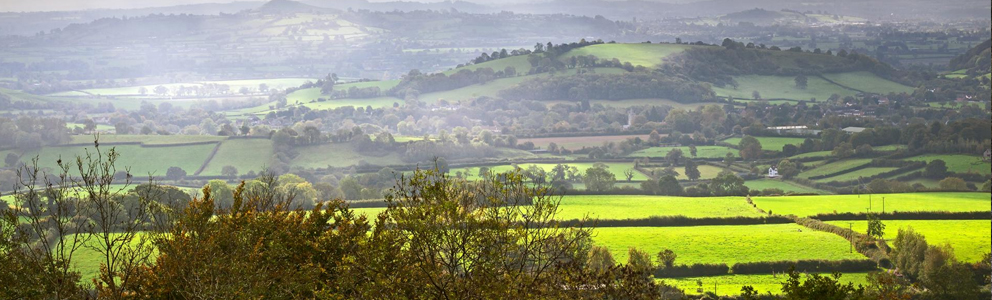 Views of fields across the country of Somerset.
